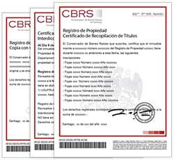 chilean company verification